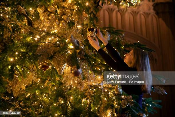 Royal Collection Trust member of staff makes the final preparations to a 20ft Norman Fir Christmas tree in St George's Hall at Windsor Castle,...