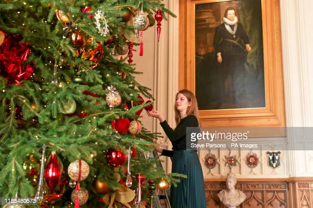 A Royal Collection Trust member of staff puts the finishing touches to a 20ft Nordmann fir tree sourced from the Windsor Great Park in St George's...