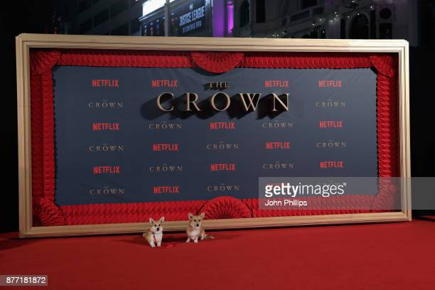 Royal Corgis at the World Premiere of season 2 of Netflix 'The Crown' at Odeon Leicester Square on November 21 2017 in London England