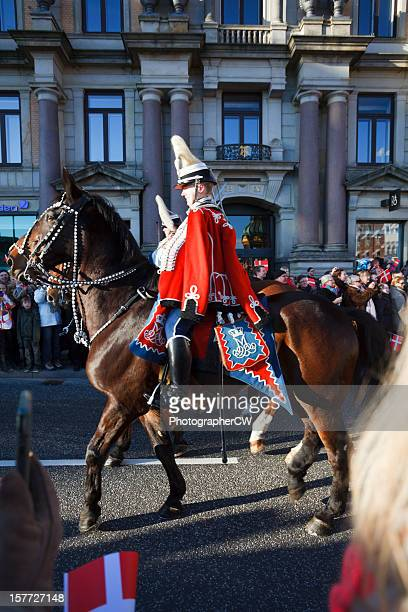 royal danish life guard - honor guard stock pictures, royalty-free photos & images