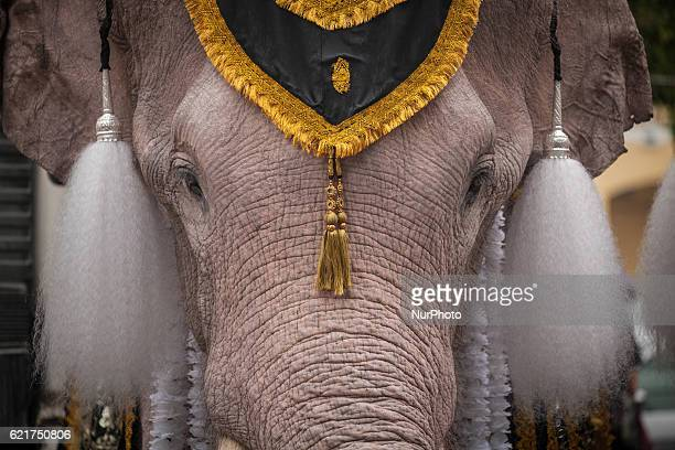 Royal Elephants and mahouts from Ayuthaya Province get dress at the Territorial Defence Command Headquarte before heading front of the Grand Palace...