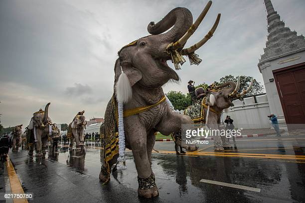 Royal Elephants and mahouts from Ayuthaya Province march for the Grand Palace to pay respect to late Thailand King Bhumibol Adulyadej in Bangkok...