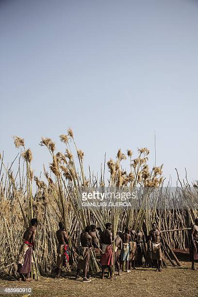 Royal family marshalls recover reed from the maidens as they sing and dance during the first day of the annual royal reed dance at the Ludzidzini...