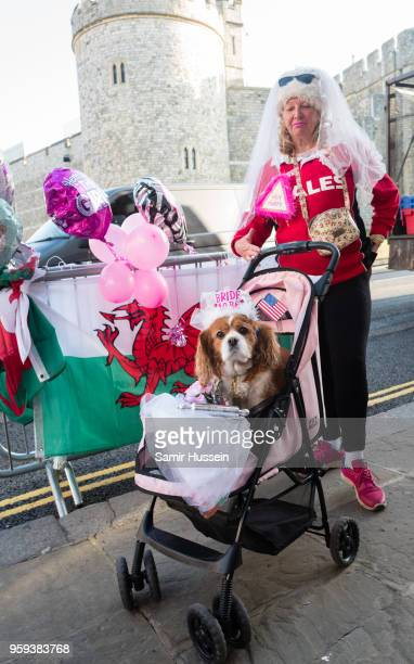 A royal fan and her dog gather outside Windsor Castle on May 17 2018 in Windsor England Preparations continue in the town for the wedding between...