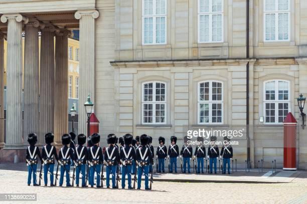 royal guard copenhagen, denmark - animal skin rug stock pictures, royalty-free photos & images