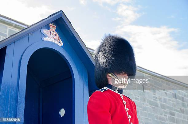 royal guard in front of quebec citadel - bearskin hat stock pictures, royalty-free photos & images