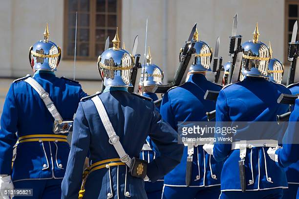 Royal Guards of Sweden