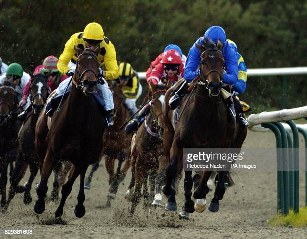 Royal Jelly ridden by Jimmy Fortune beats Archeology to win the Shirley Oaks EBF Maiden Fillies' Stakes at Lingfield Races
