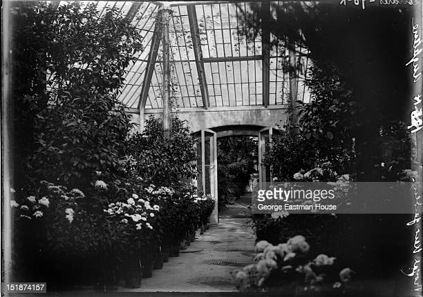 Royal Kew Gardens Angleterre/Londres, between 1900 and 1919.