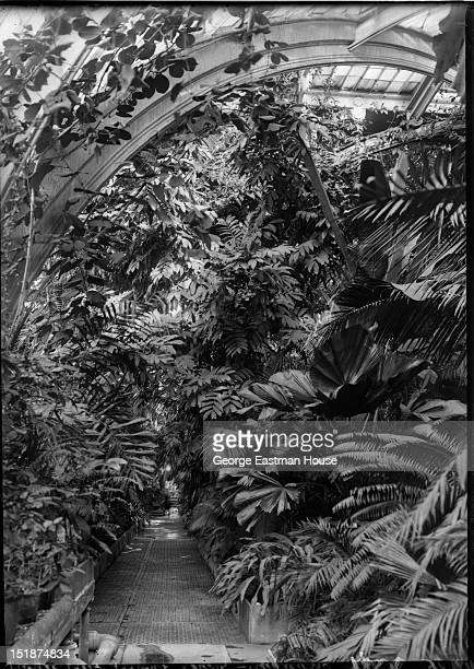 Royal Kew Gardens Londres-Angleterre, between 1900 and 1919.
