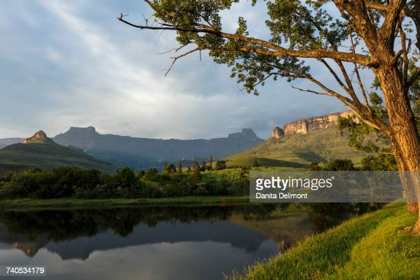 Royal Natal National Park with view of Amphitheatre, uKhahlamba Drakensberg Park, KwaZulu Natal, South Africa