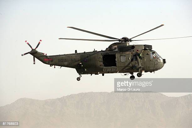 Royal Navy Sea King helicopter from the 846 Naval Air Squadron Commando Helicopter Force part of the Joint Helicopter Force takes to the air during a...