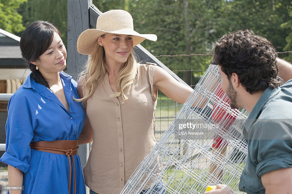 Royal Pains Pictures | Getty Images