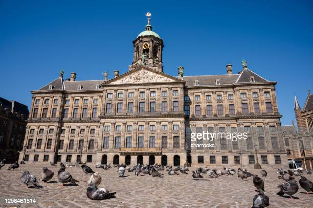 royal palace amsterdam, netherlands - royal palace amsterdam stock pictures, royalty-free photos & images