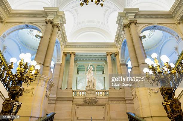 royal palace in brussels - royal palace brussels stock pictures, royalty-free photos & images