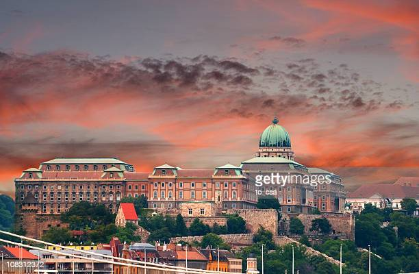 royal palace of buda, budapest - hungary - royal palace budapest stock pictures, royalty-free photos & images