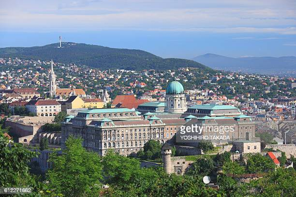royal palace of buda, budapest, hungary - royal palace budapest stock pictures, royalty-free photos & images