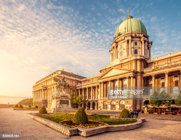 royal palace of buda in budapest - royal palace budapest stock pictures, royalty-free photos & images