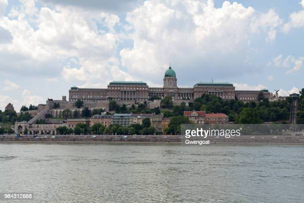 royal palace von buda in budapest - gwengoat stock-fotos und bilder