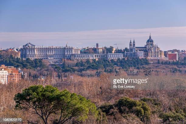 royal palace of madrid & the almudena cathedral - アルムデナ大聖堂 ストックフォトと画像