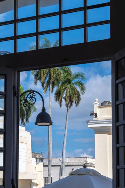 Royal Palm framed in the Hotel Encanto Sagua, Sagua La Grande, Cuba