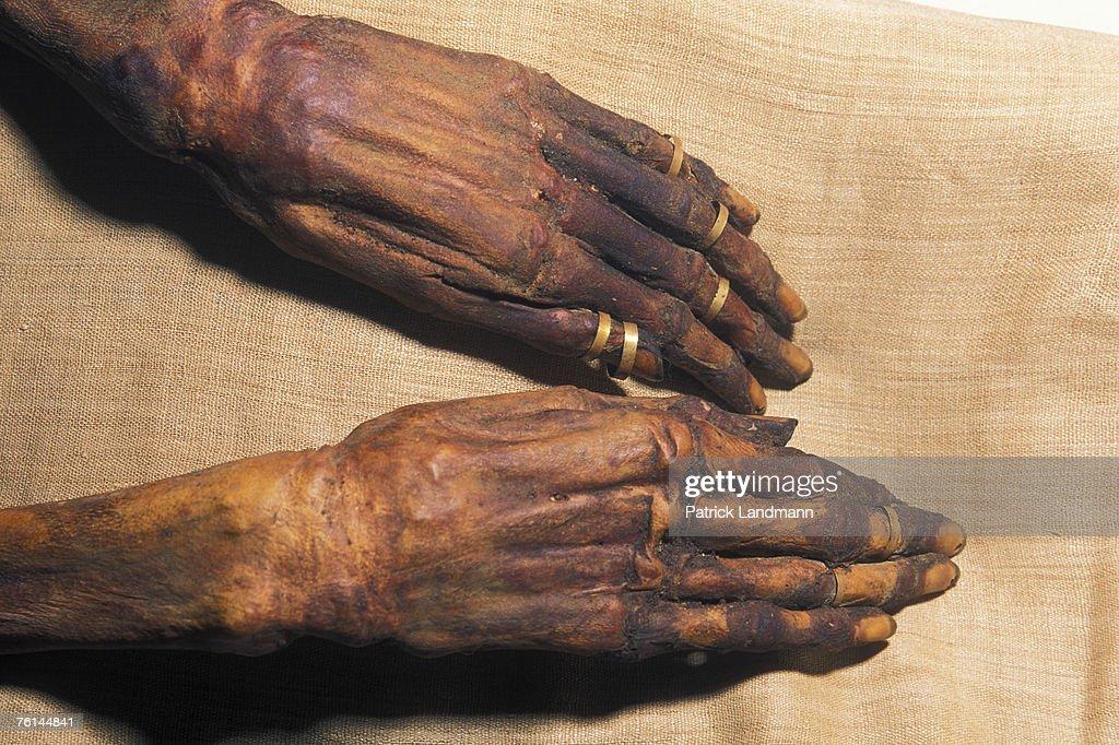 Egypt's Mummies : News Photo