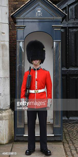 royal sentry - bearskin hat stock pictures, royalty-free photos & images