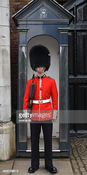 royal sentry - chapéu da guarda real britânica imagens e fotografias de stock