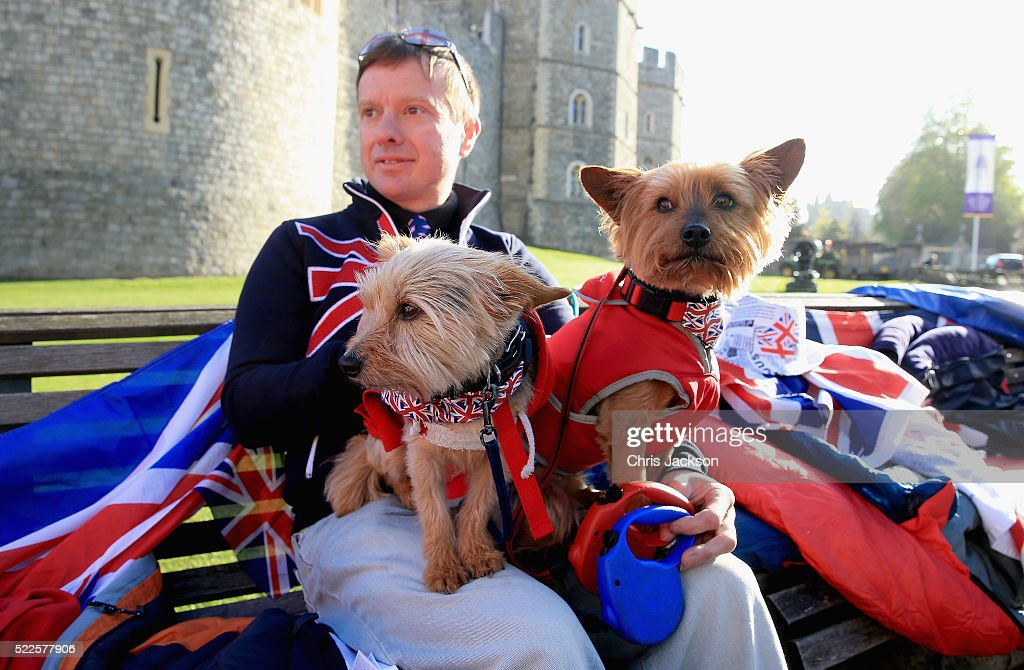 A royal 'super-fan' waits with his patriotically dressed dogs outside Windsor Castle in preparation for the Queen's 90th Birthday tommorow on April 20, 2016 in Windsor, England. The Queen and Duke of Edinburgh are carrying out engagements in Windsor ahead of the Queen's 90th Birthday tommorow.