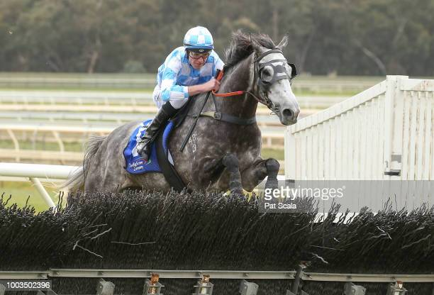 Royal Thunder with David Hayes and owners after winning the Hygain BM58 Highweight Handicap at Bendigo Racecourse on July 22 2018 in Bendigo Australia