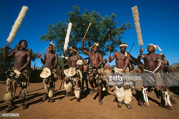 Royal Zulu men and women perform the traditional war dance dressed in the same garb the Afrikaans wore in their confrontation with white colonialists