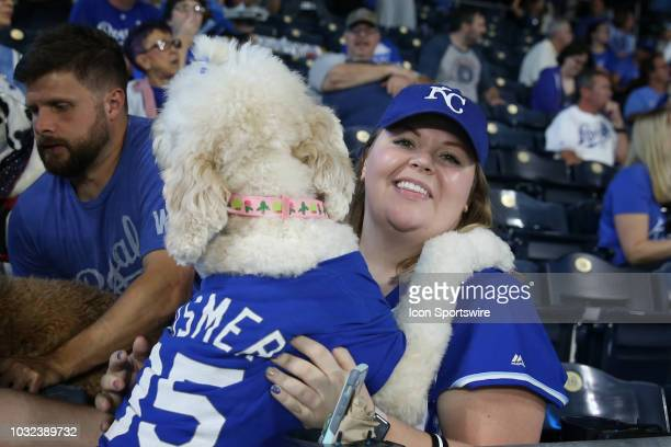 Royals fans and their canine friends enjoy 'Bark in the Park' night during an MLB game between the Chicago White Sox and Kansas City Royals on...
