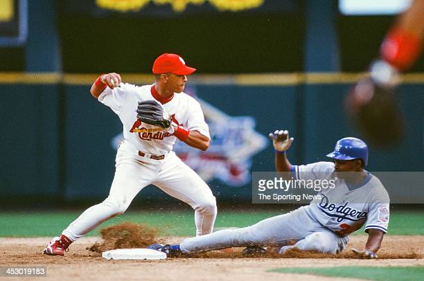 Royce Clayton of the St Louis Cardinals during the Opening Day game against the Los Angeles Dodgers on March 31 1998 at Busch Stadium in St Louis...