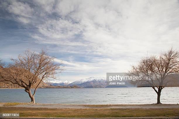 Roys Bay, Lake Wanaka