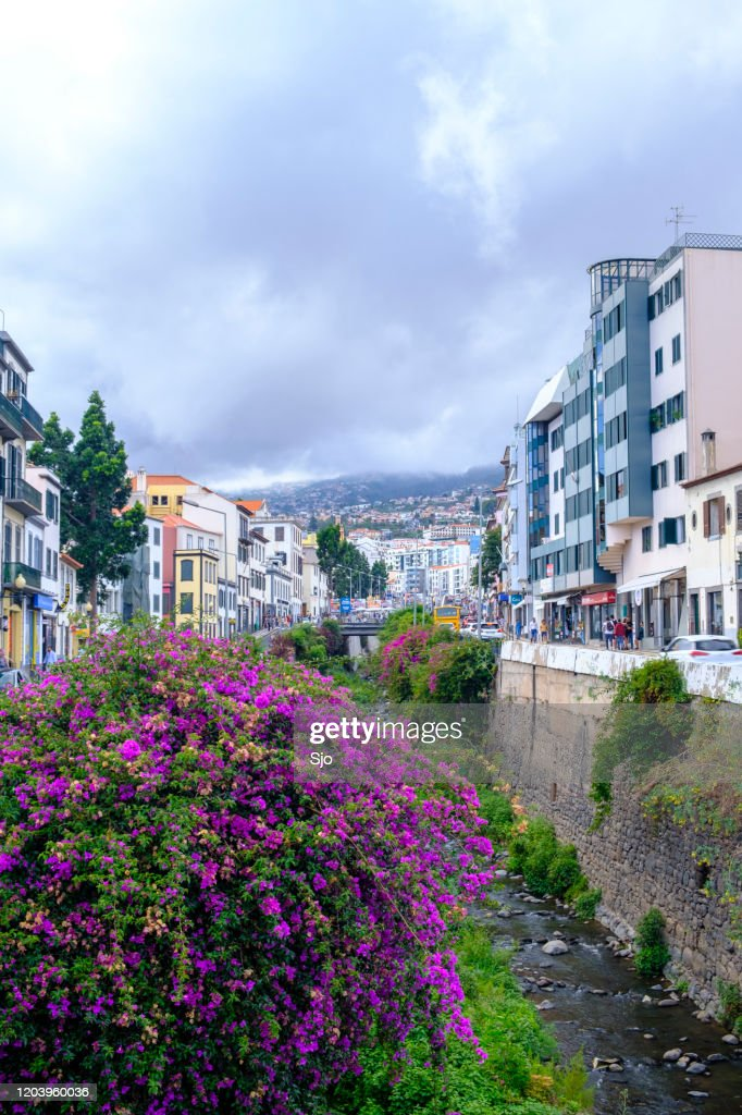 Rua de Janeiro next to the Ribeira de Santa Luzia in Funchal on Madeira island during summer day : Stock Photo