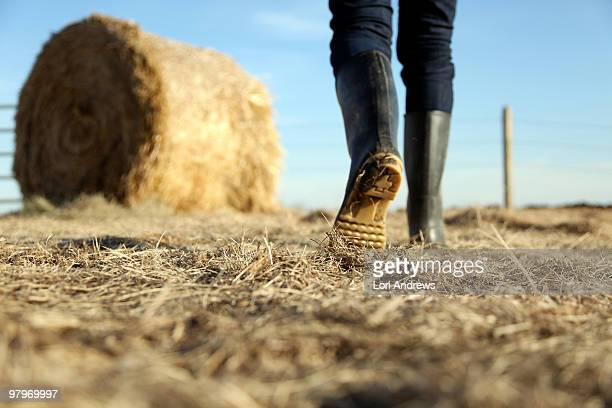 Rubber boots and golden hay-bale ranch work