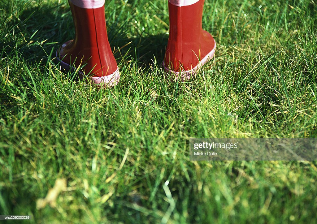 Rubber boots. : Stockfoto