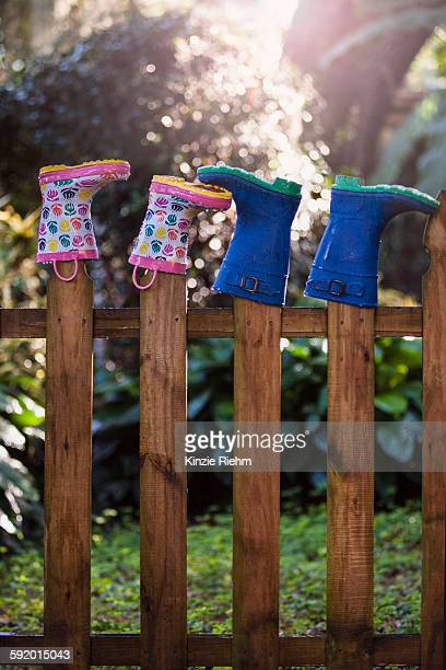 Rubber boots, upturned, on wooden fence posts
