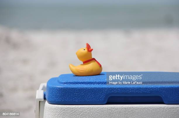 Rubber duck at the beach on cooler