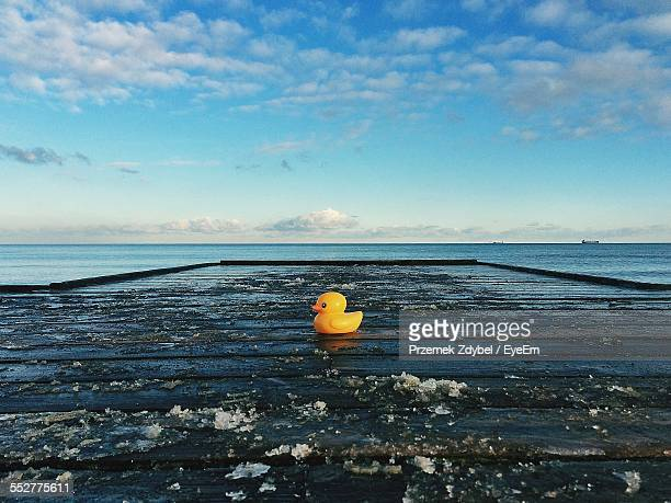 Rubber Duck On Frozen Pier By Sea Against Sky