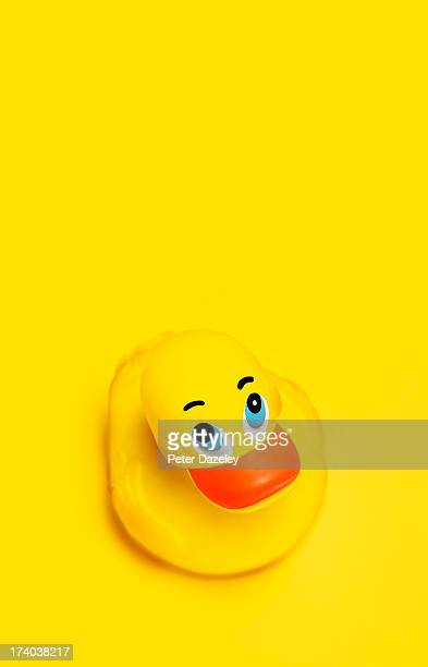 Rubber duck on yellow background