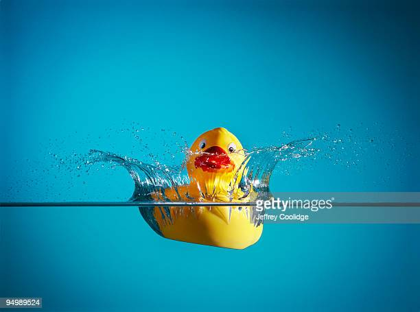 rubber duck splashing in water - rubber duck stock pictures, royalty-free photos & images