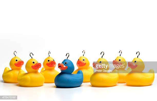 Rubber duck standing out of the crowd