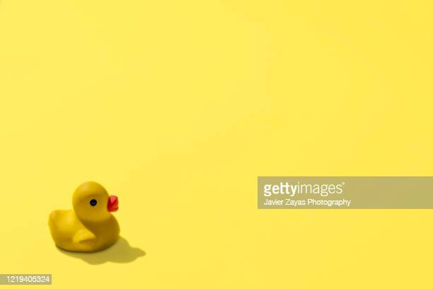 rubber duckie on yellow background - rubber duck stock pictures, royalty-free photos & images