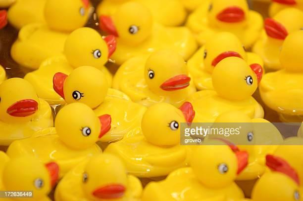 Rubber duckies at the fair
