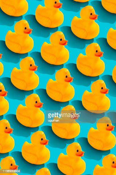 rubber duckl pattern on color background. from top view - rubber duck stock pictures, royalty-free photos & images