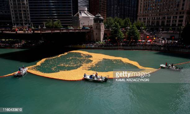 Rubber ducks float down the Chicago River during the 14th Annual Ducky Derby, on August 8, 2018 in Chicago, Illinois. - The charity event helps to...
