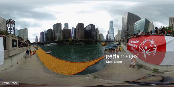 Rubber ducks float down the Chicago River during the Windy City Rubber Ducky Derby on August 3 2017 in Chicago Illinois Derby organizers drop 60000...