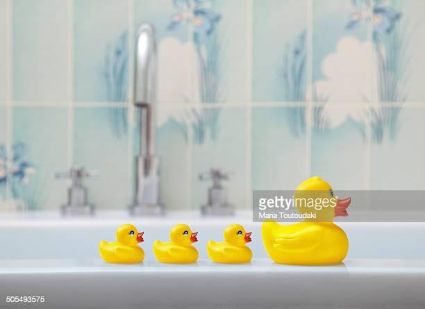 Rubber ducks in a bathroom