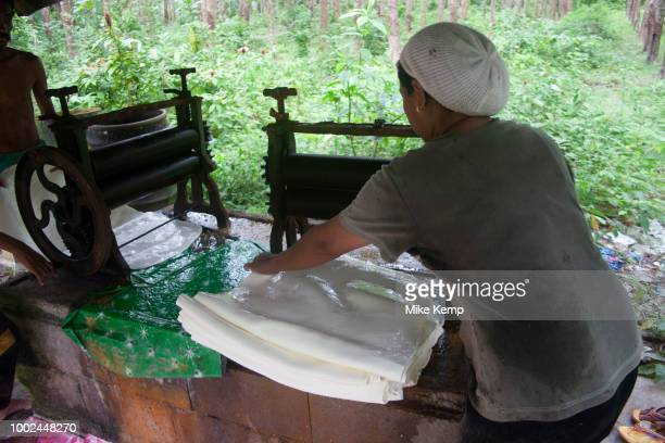 Rubber plantation and processing on the east coast of Koh Lanta Thailand Rubber is a very important commodity in South East Asia having been...